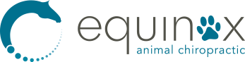 Equinox Animal Chiropractic - Logo